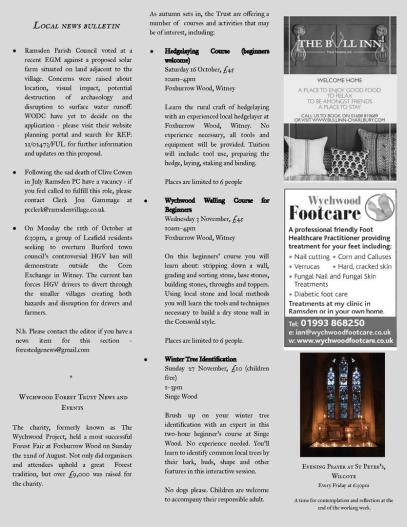 Forest Edge Newsletter